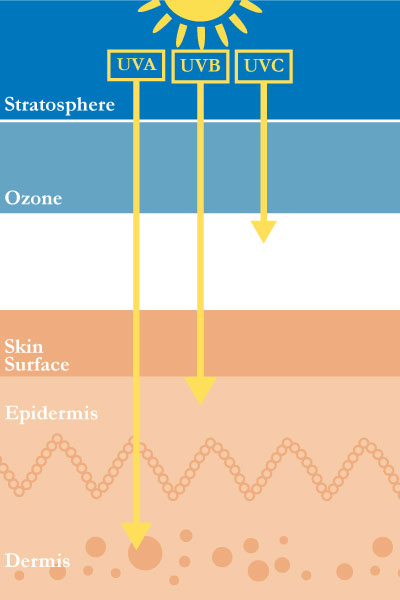 UV rays and its penetration into the skin